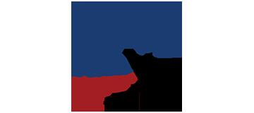 NPAP Logo
